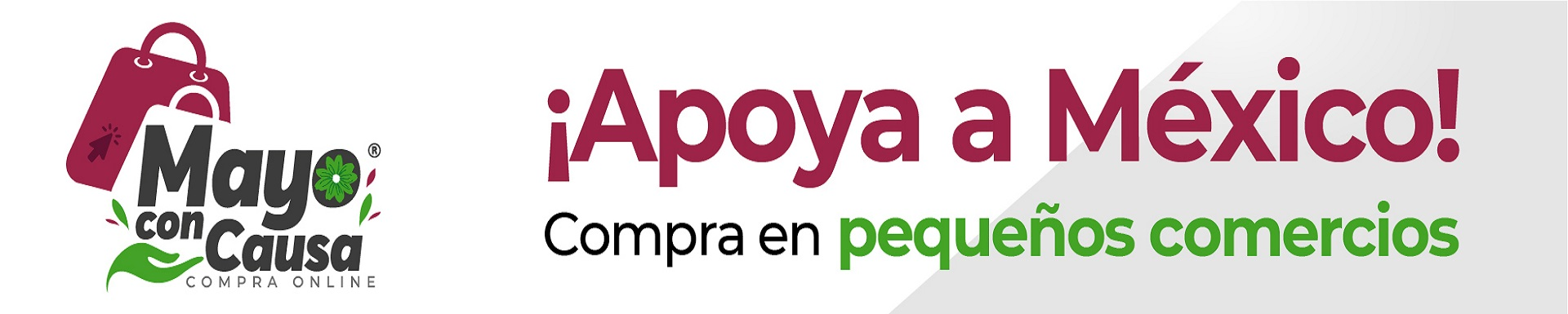 Consulta Plan de Desarollo Chiapas 2019-2024